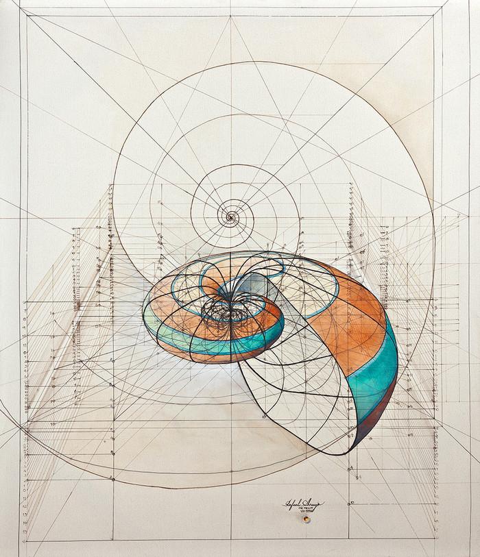 Золотое сечение от архитектора Rafael Araujo Арт, Золотое сечение, Раскраска, Ракушки, Рисунок, Длиннопост