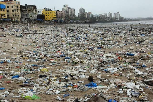 Хорошие новости Хорошие новости, Добро, Длиннопост, Индия, Экология, Черепаха, Мусор