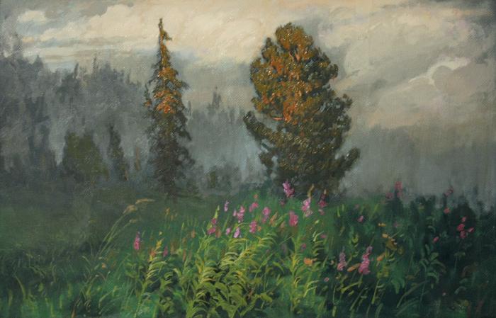 Тайга. Туман. Живопись, Тайга, Кедр, Туман, Кипрей, Природа, Картина