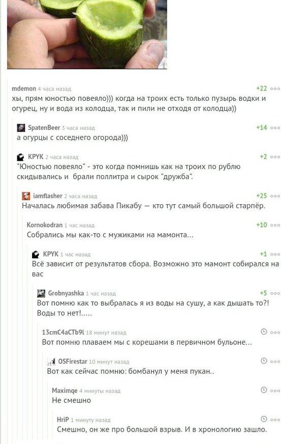 О бренности бытия Комментарии на Пикабу, Скриншот, Забава, Юмор