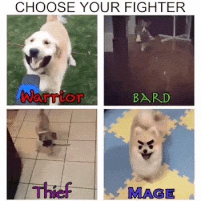 Выбери своего бойца