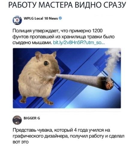 Вот такие мыши)