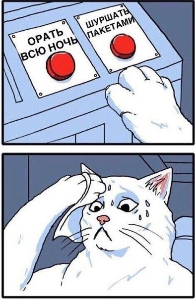 Сложный выбор Кот, Комиксы, Мемы