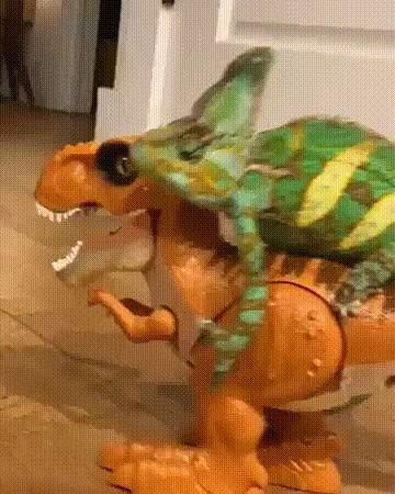 Вперед, мой верный конь!
