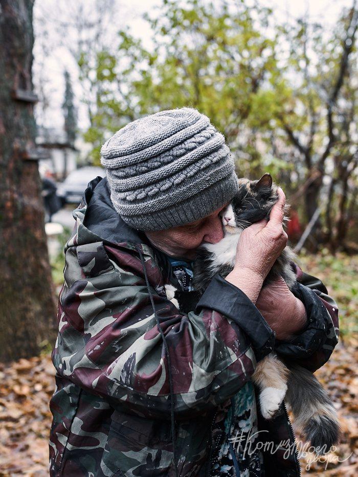 Про кошек и бабушек Бабушка, Кот, Фотография, Фотограф, Горячие обьятия, Любовь