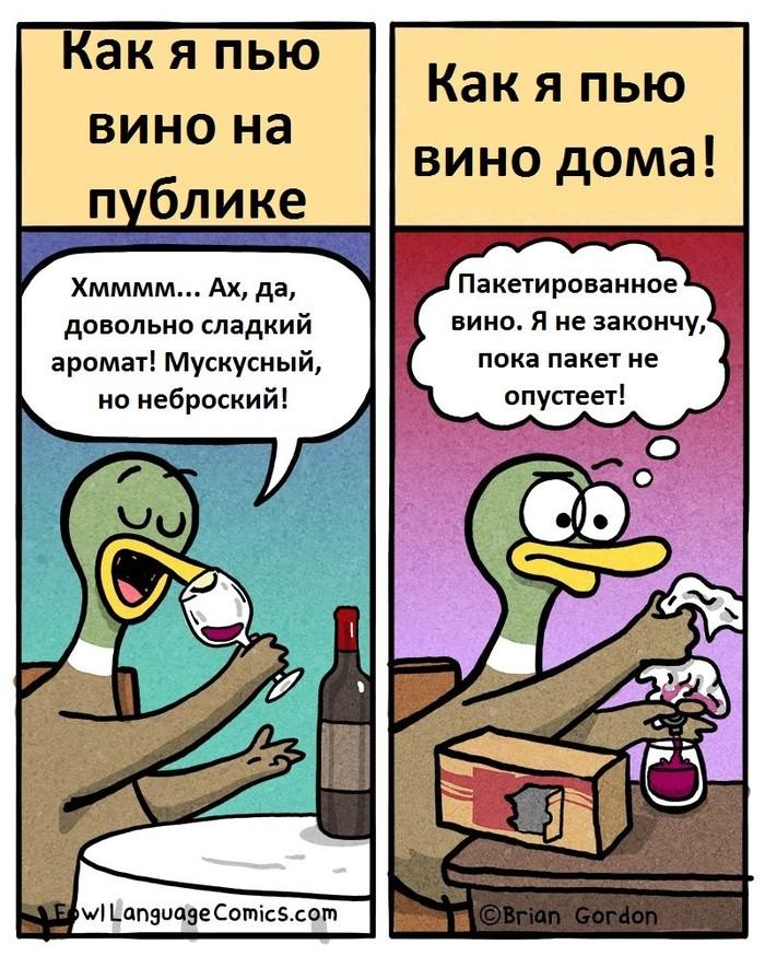Вино Комиксы, Brian Gordon