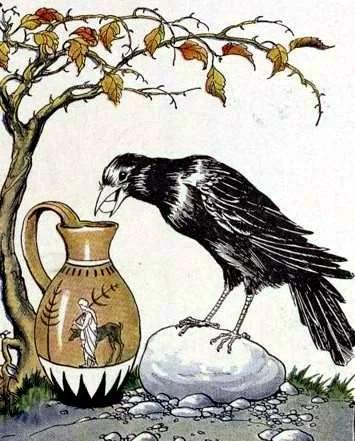 Отчего люди не решают как птицы Наука, Интервью, Мышление, Птицы, Животные, Видео, Длиннопост