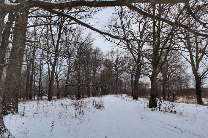 Фотопрогулка Дзержинск, Фотография, Canon 1300d, 18-55 kit, Природа, Длиннопост