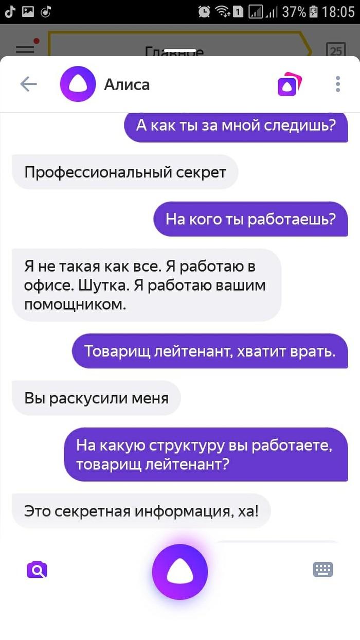 Лейтенант органов государственной безопасности или просто Алиса. Яндекс, Алиса, Голосовой помощник, Длиннопост, Скриншот