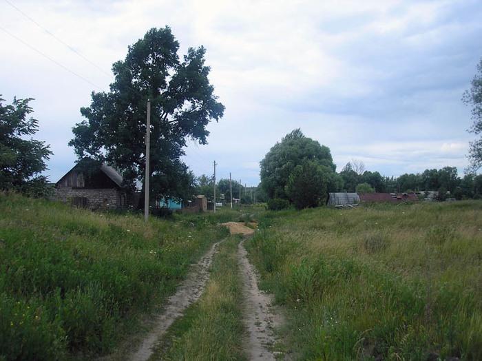 Приключения сельского педиатра (продолжение) Медицина, Деревня, Длиннопост
