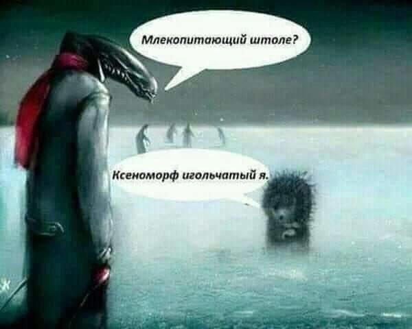 Ксеноморф игольчатый