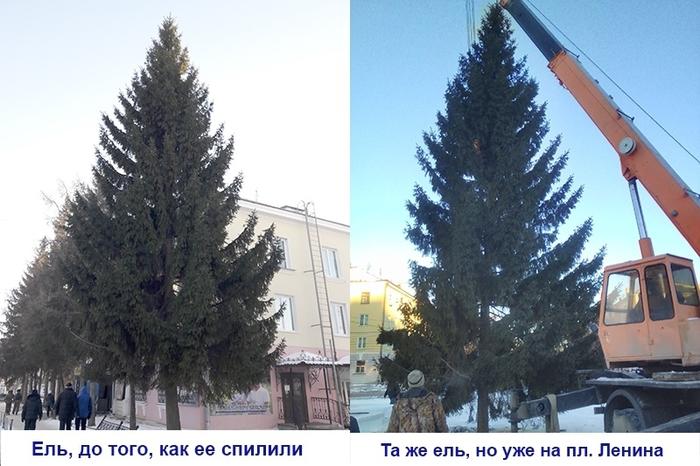 В Чебаркуле на главной площади установили ёлку, которую спилили с соседней улицы. Ёлка, Новый Год, Чебаркуль, Негатив