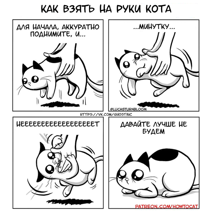 Кот Комиксы, Перевел сам, Кот, Инструкция, Lucas Turnbloom