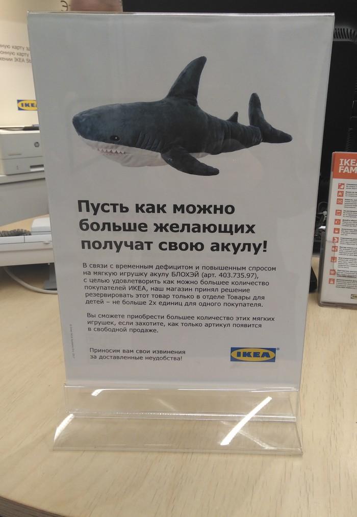Борьба с дефицитом акул