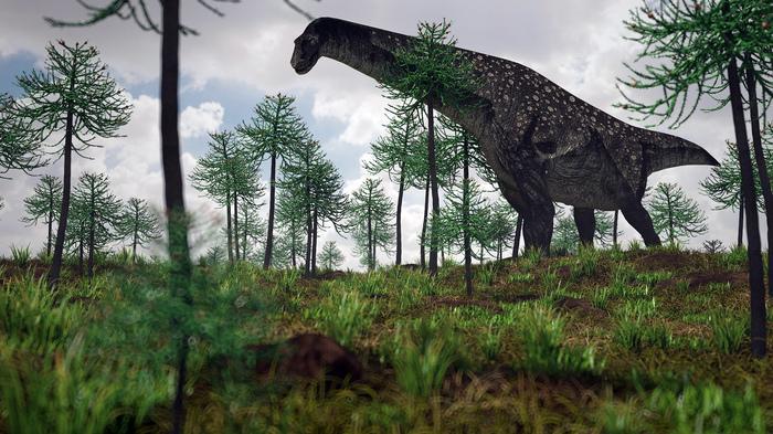 Титанозавра вычислили по позвонкам Динозавры, Титанозавр, Палеонтология