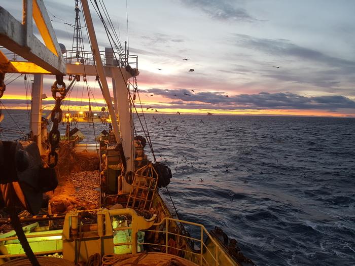 В тему моряков Море, Закат, Фотография