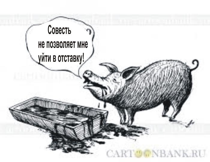 Чиновничьей совести пост... Чиновники в край офигели, Отставка