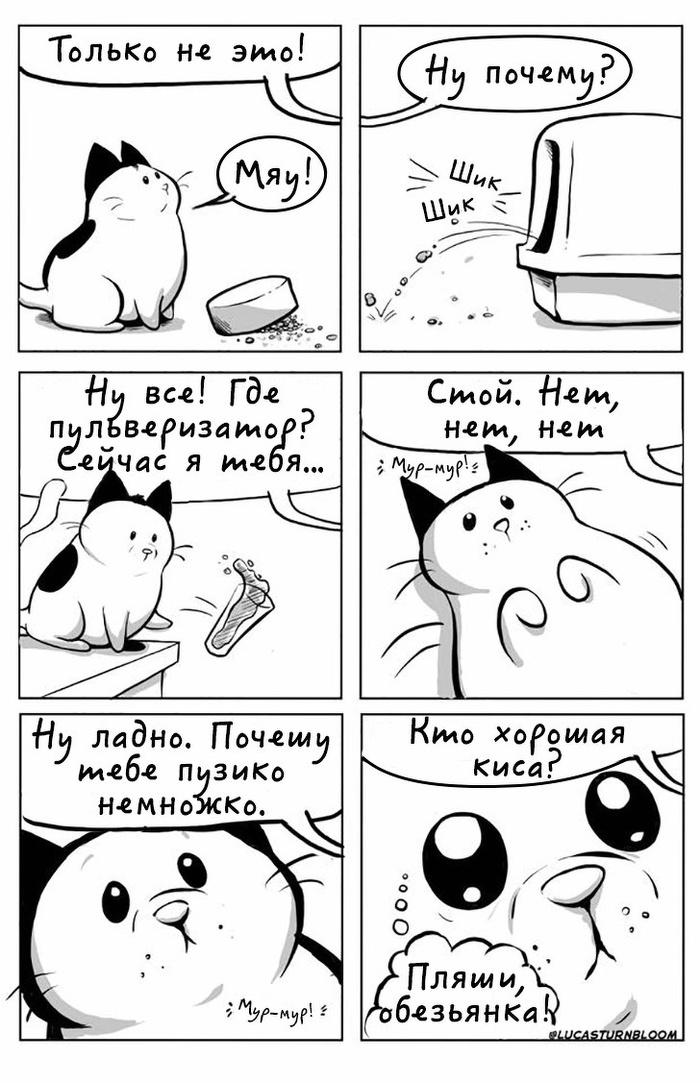 Котобудни Кот, HowToCat, Комиксы, Длиннопост, Lucas Turnbloom