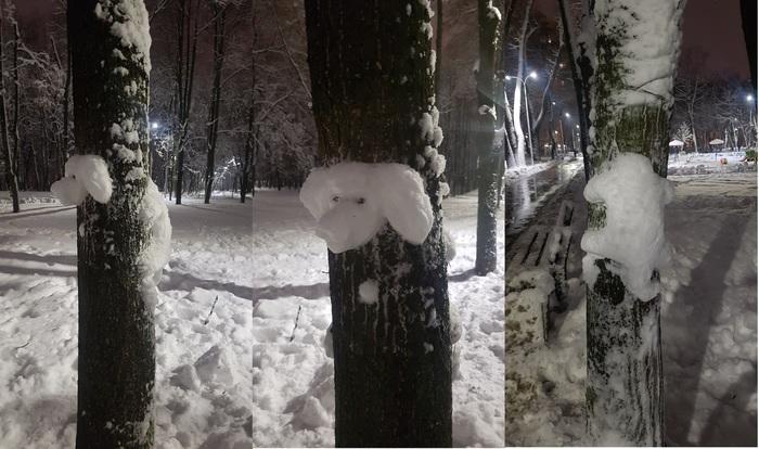 Порадовали Снеговик, Снег, Дерево