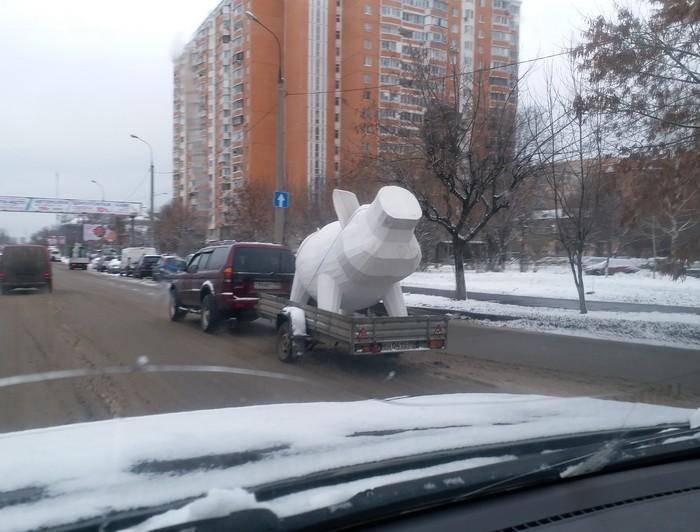 Вот какие свиньи ездят по дорогам Королёва!