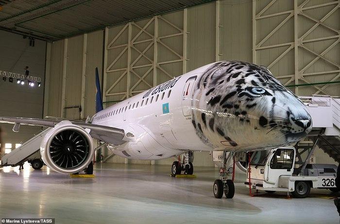 Необычный самолет Самолет, Бюджетные авиалинии, Снежный барс, Казахстан, Длиннопост