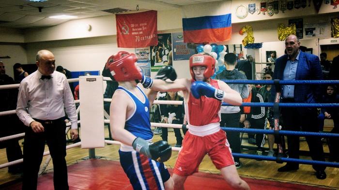 Соревнования по боксу +7 Бокс, Соревнования, Отцы и дети, Длиннопост