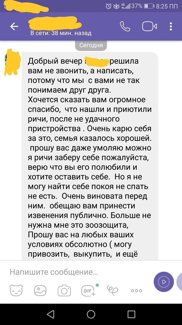 Диванные волонтеры продолжение... Длиннопост, Собака, Зоошиза, Челябинск