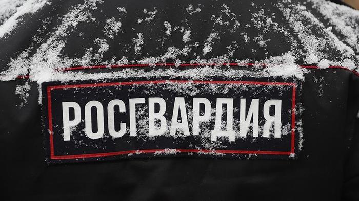 Росгвардия подаст в суд на РБК за публикации о поставках Новости, Россия, Росгвардия, РБК, Политика, Суд, Алексей Навальный