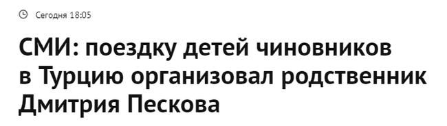 Как профессионально натягивать сову на глобус Политика, Чиновники, Дмитрий Песков, Турция