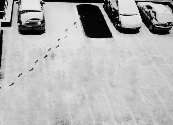 In the year 2049 Как так?, Фотошоп мастер, Снег, Будущее