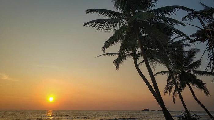 Зачем ехать на Шри-Ланку Путешествия, Шри-Ланка, Тропики, Зелень, Природа, Длиннопост