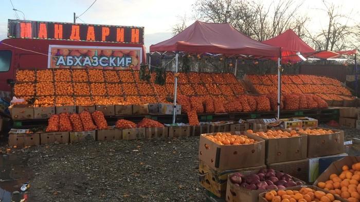 Мандариновый край Мандарины, Абхазия, Очень скоро Новый год, Длиннопост