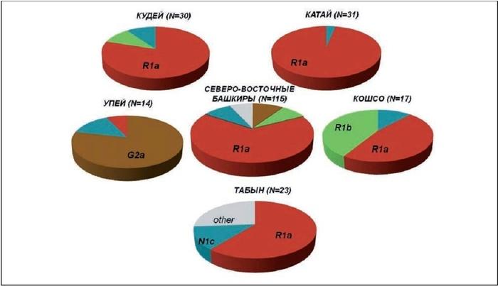 Околонаучная сенсация. Башкиры R1b = кельты Башкиры, Генетика, Башкортостан, Гены, R1b, Популяционная генетика, Кельты, Тюрки, Длиннопост