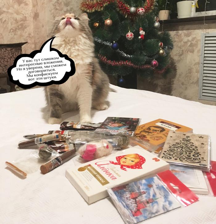 АДМ: как нам «внуки» праздник сделали Отчет по обмену подарками, Тайный Санта, Обмен подарками, Новогодний обмен подарками, Кот, Длиннопост