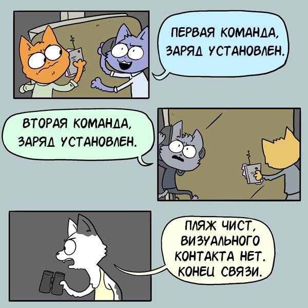 0100 (Ноль один ноль ноль) Комиксы, Гифка с предысторией, AC Stuart, Кот, Гифка, Длиннопост