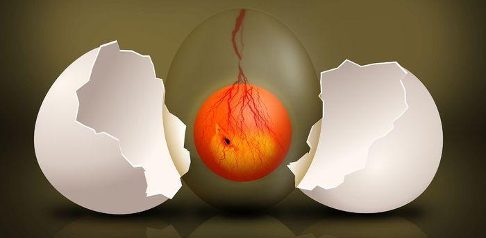 ТОП-10 от Science: изучаем эмбриональные гены – дирижеры роста и развития организма Эмбриональное развитие, Гены, Эмбриональные гены, Секвенирование РНК, Длиннопост
