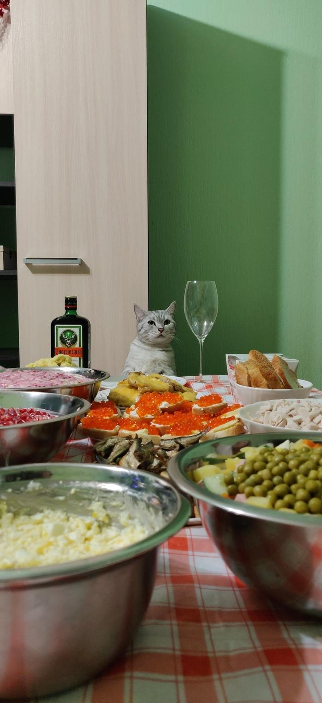 С новым годом, пикабу! Кот, 2019, Длиннопост