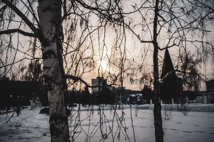 Последний день этого года Барнаул, Зима, Фотография, Начинающий фотограф, Длиннопост
