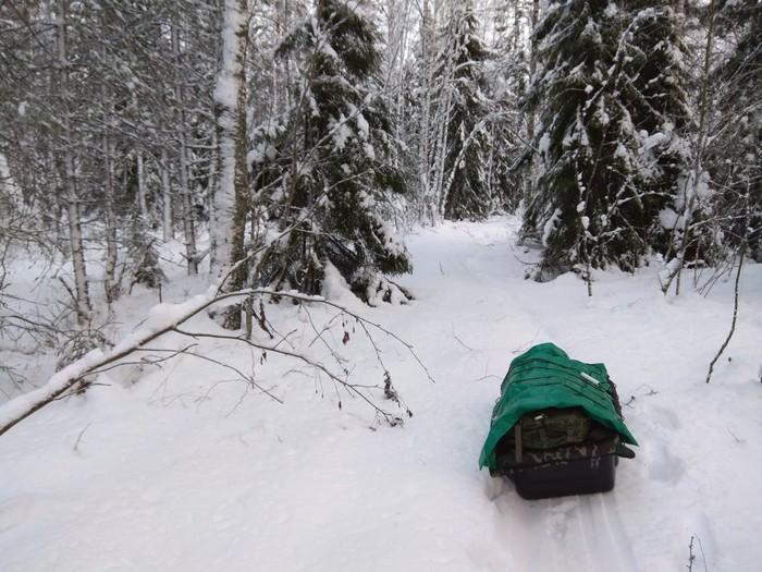 На новый год в поход... Нановыйгодвпоход, Туризм, Лес, Новый Год, Поход, Зима, Зимний поход