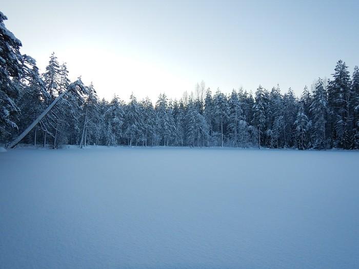 На новый год в поход Нановыйгодвпоход, Туризм, Лес, Поход, Зимний поход, Новый Год, Длиннопост