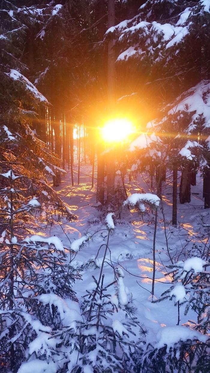 Снежная Карелия. Фотография, Зима, Карелия, Длиннопост, Начинающий фотограф