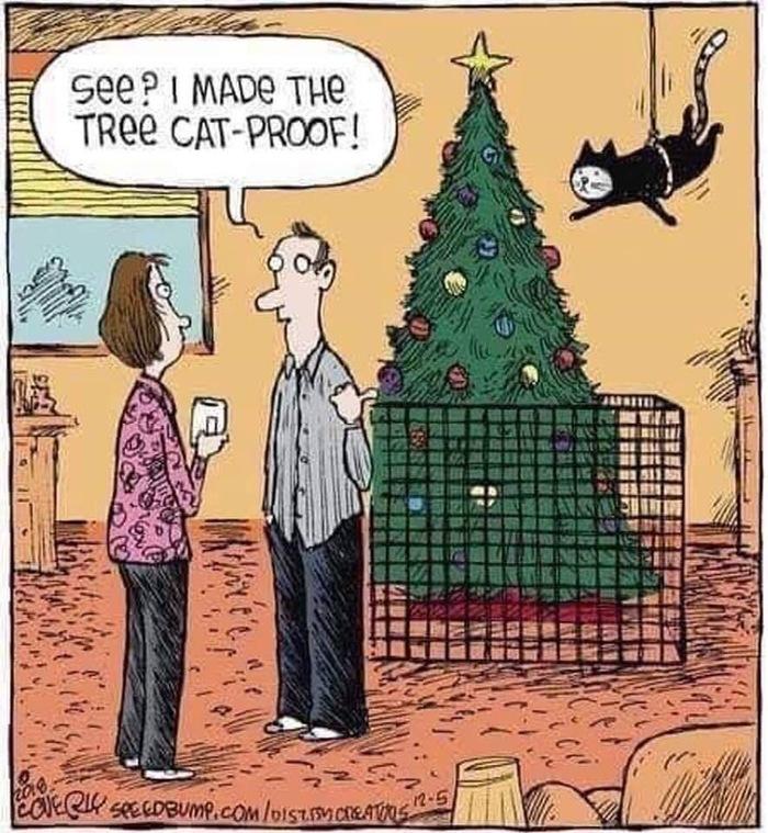 Видишь? Я сделал елку недосягаемой для кота