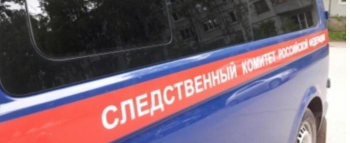 СК обнародовал подробности двойного убийства в Череповце: проститутке было всего 19 лет Череповец, Убийство, Криминал, Сутенер, Проституция, Негатив