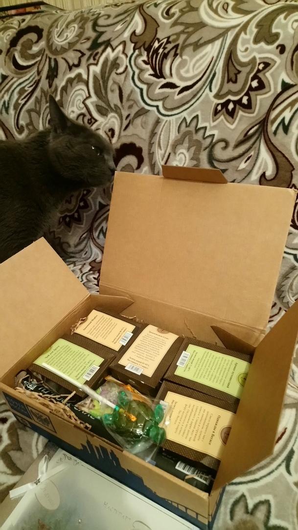 Мой подарок от Снегурочки! Тайный Санта, Сайт, Новый Год, Длиннопост, Обмен подарками, Отчет по обмену подарками, Кот