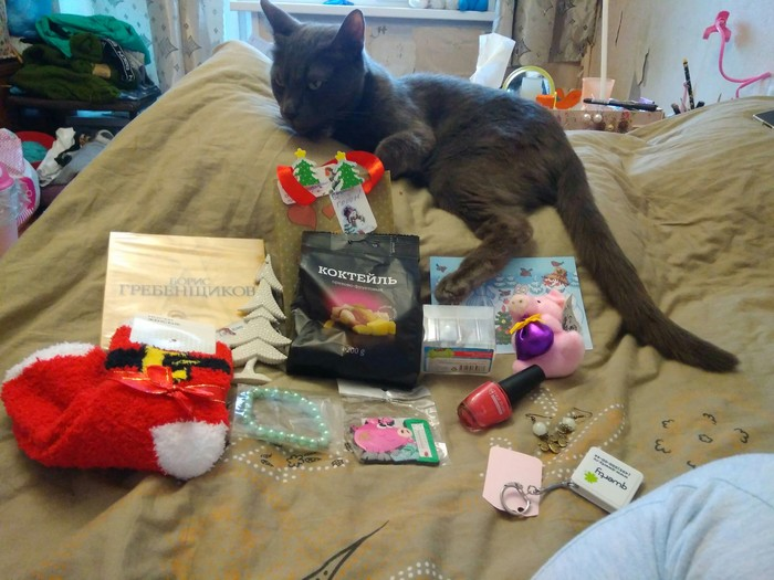 Обмен Подарками - АДМ 2018-19 Новогодний обмен подарками, Отчет по обмену подарками, Длиннопост, Обмен подарками, Тайный Санта, Кот