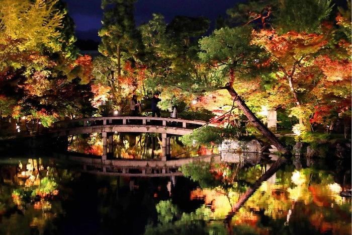 Как расставить фонари в парке, чтобы по ночам было красиво
