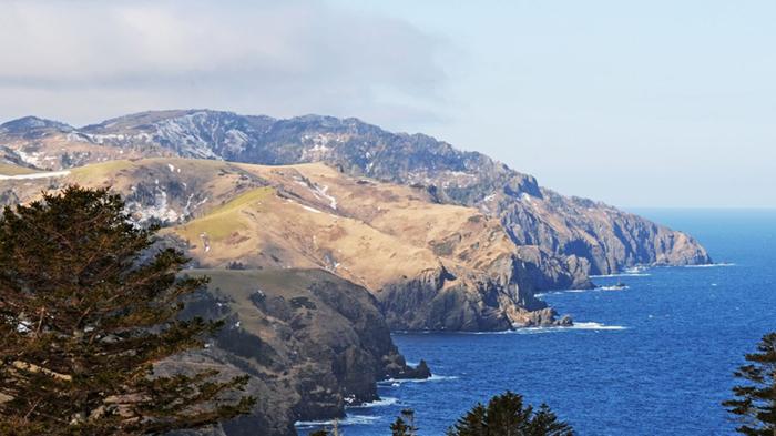 В Госдуму внесён проект о территориальных претензиях со стороны Японии Политика, Южные Курилы