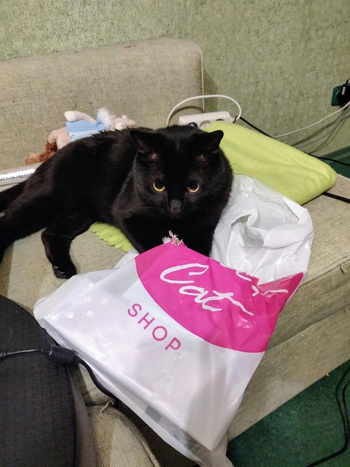 Кот и пакеты Кот, Пакет