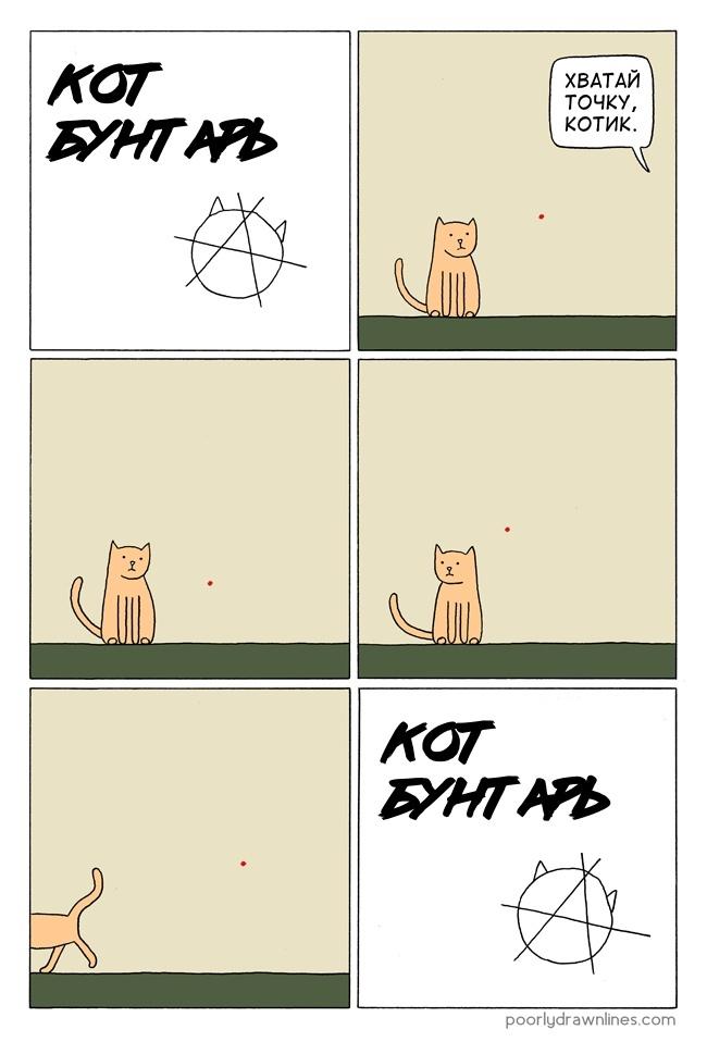 Кот бунтарь (кот бунтарь)