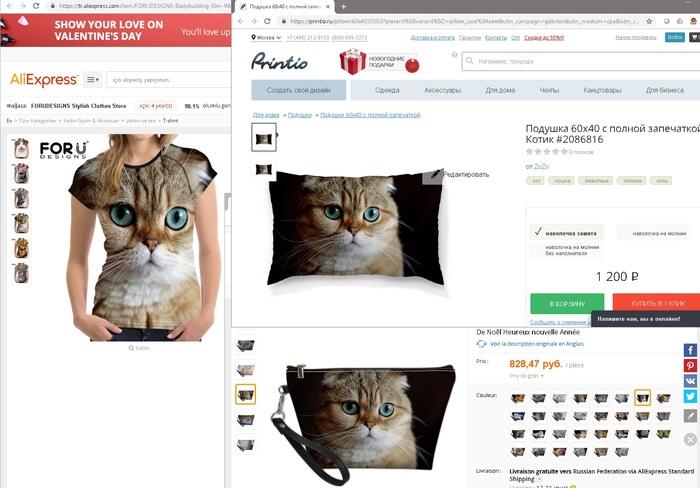 Оказывается, моя кошка подрабатывает моделью у китайцев Кот, Жулики, Котомафия, Шотландская вислоухая